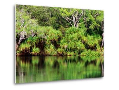 Mardugal Billabong, Kakadu National Park, Northern Territory, Australia-John Banagan-Metal Print