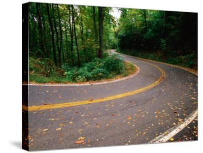 Curve in Road of Highway 32, Great Smoky Mountains National Park, Tennessee-John Elk III-Stretched Canvas Print