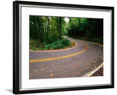 Curve in Road of Highway 32, Great Smoky Mountains National Park, Tennessee-John Elk III-Framed Photographic Print