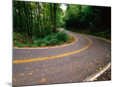 Curve in Road of Highway 32, Great Smoky Mountains National Park, Tennessee-John Elk III-Mounted Photographic Print