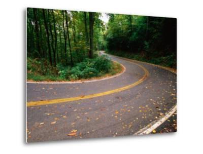 Curve in Road of Highway 32, Great Smoky Mountains National Park, Tennessee-John Elk III-Metal Print