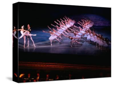 Ballet, Swan Lake Performance, Odesa Opera House, Odesa, Ukraine-Holger Leue-Stretched Canvas Print