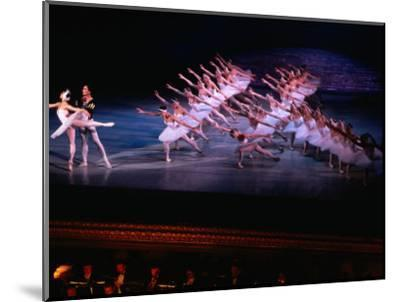 Ballet, Swan Lake Performance, Odesa Opera House, Odesa, Ukraine-Holger Leue-Mounted Photographic Print