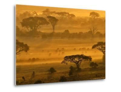 Herbivores at Sunrise, Amboseli Wildlife Reserve, Kenya-Vadim Ghirda-Metal Print