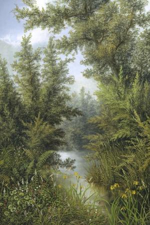 Secret Pool-Albert Lucas-Stretched Canvas Print