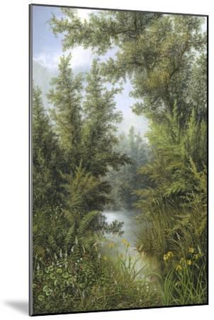 Secret Pool-Albert Lucas-Mounted Giclee Print