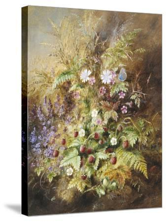 Wild Strawberries and a Butterfly-Albert Lucas-Stretched Canvas Print