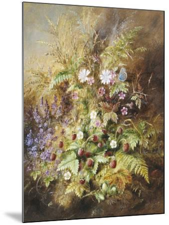 Wild Strawberries and a Butterfly-Albert Lucas-Mounted Giclee Print