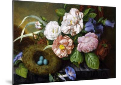 Still Life of Camelias-Woodleigh Marx Hubbard-Mounted Giclee Print