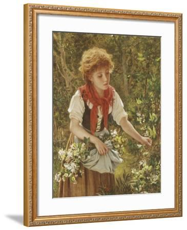 Picking Honeysuckle-Sophie Anderson-Framed Giclee Print