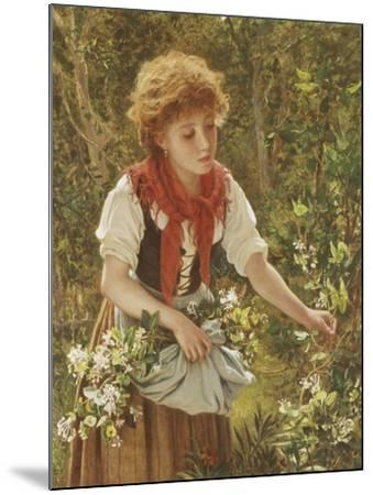 Picking Honeysuckle-Sophie Anderson-Mounted Giclee Print