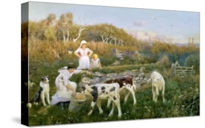 Feeding the Calves-Thomas J. Lloyd-Stretched Canvas Print