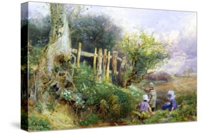 Gathering Primroses-Myles Birket Foster-Stretched Canvas Print
