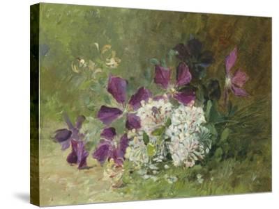 Clematis and Honeysuckle-Albert Tibulle de Furcy Lavault-Stretched Canvas Print