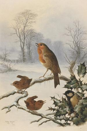 Christmas Robin and Friends-Harry Bright-Stretched Canvas Print