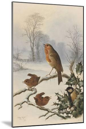 Christmas Robin and Friends-Harry Bright-Mounted Giclee Print