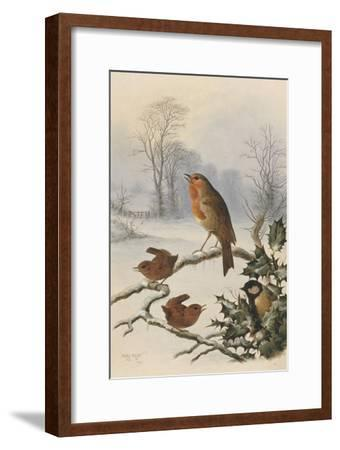 Christmas Robin and Friends-Harry Bright-Framed Giclee Print