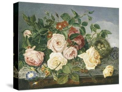 Still Life of Roses and Morning Glory-Eloise Harriet Stannard-Stretched Canvas Print