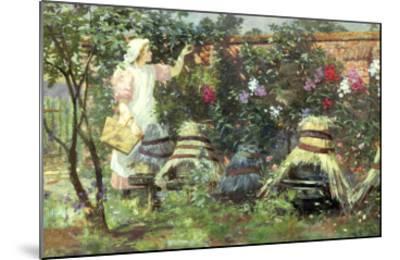 Picking Fruit in a Suffolk Garden-Lexden Lewis Pocock-Mounted Giclee Print