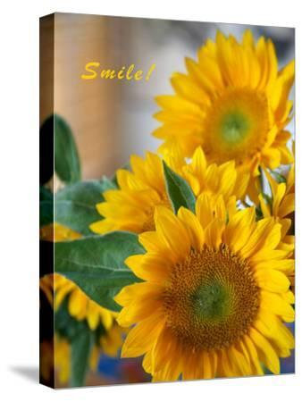Smile: Sunny Sunflower-Nicole Katano-Stretched Canvas Print