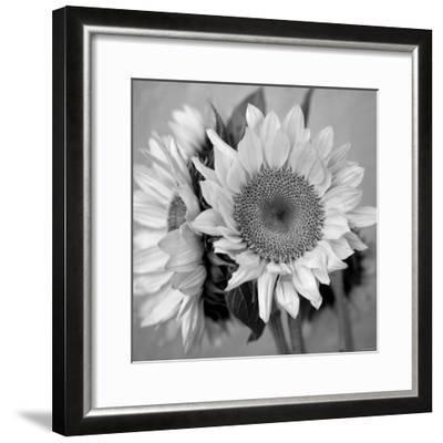 Sunny Sunflower I-Nicole Katano-Framed Photo