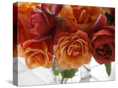 Rose Bouquet II-Nicole Katano-Stretched Canvas Print