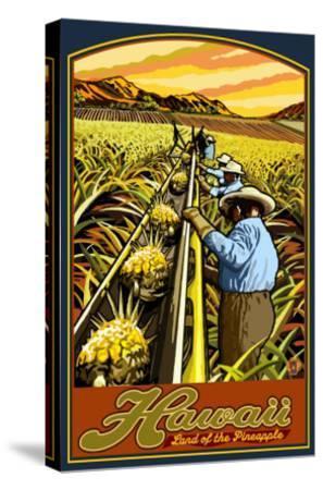 Hawaiian Pineapple Harvest-Lantern Press-Stretched Canvas Print