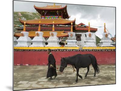 Tibetan Man with Horse in Tagong Monastery, Sichuan, China-Keren Su-Mounted Photographic Print