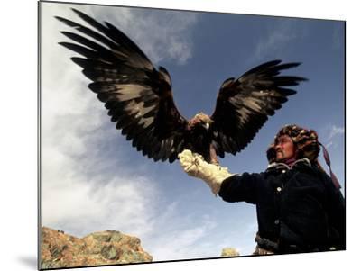 Takhuu Raising His Eagle, Golden Eagle Festival, Mongolia-Amos Nachoum-Mounted Photographic Print