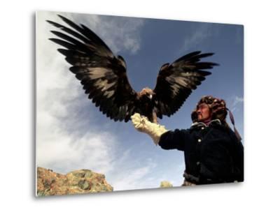 Takhuu Raising His Eagle, Golden Eagle Festival, Mongolia-Amos Nachoum-Metal Print