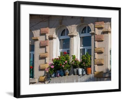Windows and Flowers in Village, Cappadoccia, Turkey-Darrell Gulin-Framed Photographic Print