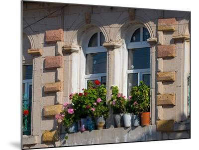 Windows and Flowers in Village, Cappadoccia, Turkey-Darrell Gulin-Mounted Photographic Print
