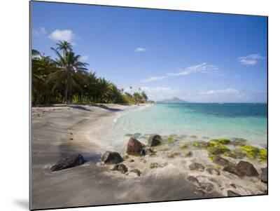 Nisbett Plantation Beach, Nevis, Caribbean-Greg Johnston-Mounted Photographic Print