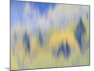 Abstract of Fall Colors of Spruce and Hemlock, Nuuksio National Park, Finland-Arthur Morris-Mounted Photographic Print