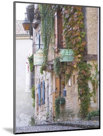 Cobblestone Street with Half Timber Stone Houses, Place De La Myrpe, Bergerac, Dordogne, France-Per Karlsson-Mounted Photographic Print