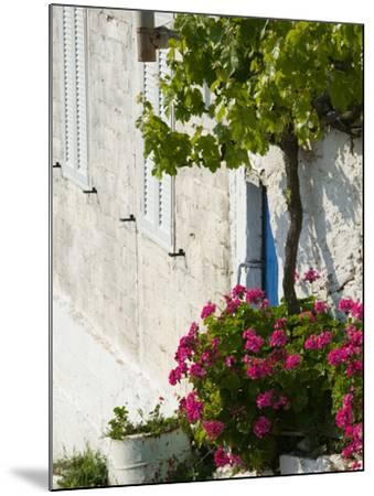 Hillside Vacation Villa Detail, Assos, Kefalonia, Ionian Islands, Greece-Walter Bibikow-Mounted Photographic Print