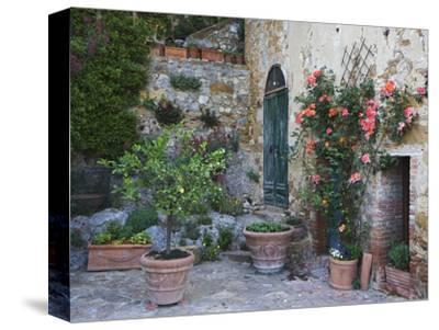Potted Plants Decorate a Patio in Tuscany, Petroio, Italy-Dennis Flaherty-Stretched Canvas Print