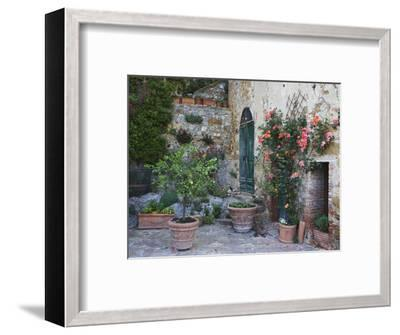 Potted Plants Decorate a Patio in Tuscany, Petroio, Italy-Dennis Flaherty-Framed Photographic Print