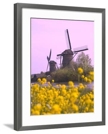 Windmills Along the Canal in Kinderdijk, Netherlands-Keren Su-Framed Photographic Print
