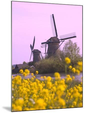 Windmills Along the Canal in Kinderdijk, Netherlands-Keren Su-Mounted Photographic Print