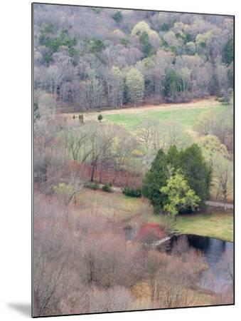 Spring Forest in East Haddam, Connecticut, USA-Jerry & Marcy Monkman-Mounted Photographic Print