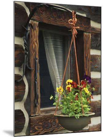Flower Basket Outside Window of Log Cabin, Fort Boonesborough, Kentucky, USA-Dennis Flaherty-Mounted Photographic Print