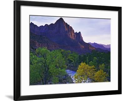 The Watchman Peak and the Virgin River, Zion National Park, Utah, USA-Dennis Flaherty-Framed Photographic Print