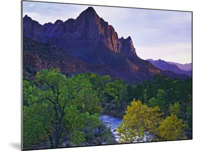 The Watchman Peak and the Virgin River, Zion National Park, Utah, USA-Dennis Flaherty-Mounted Photographic Print
