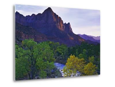 The Watchman Peak and the Virgin River, Zion National Park, Utah, USA-Dennis Flaherty-Metal Print