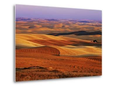 View of Colorful Palouse Farm Country at Twilight, Washington, USA-Dennis Flaherty-Metal Print