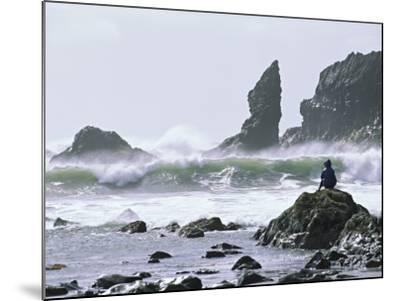 Beach at Lappish, Olympic National Park, Washington, USA-Charles Sleicher-Mounted Photographic Print