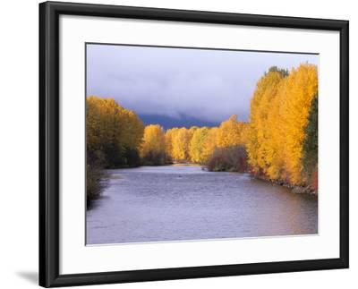 Yakima River and Trees in Autumn, Near Cle Elum, Kittitas County, Washington, USA-Jamie & Judy Wild-Framed Photographic Print