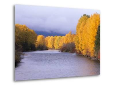 Yakima River and Trees in Autumn, Near Cle Elum, Kittitas County, Washington, USA-Jamie & Judy Wild-Metal Print