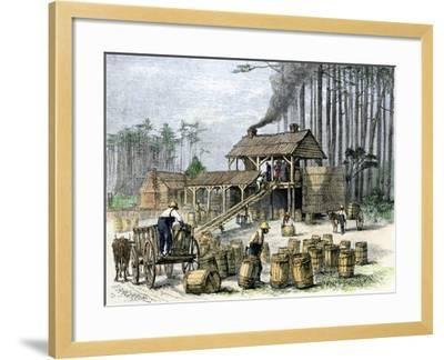 Turpentine Distillery in North Carolina, c.1870--Framed Giclee Print